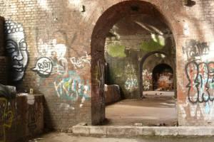 Funky buddha tunnels