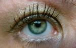 Radiant Daytime EyeLook