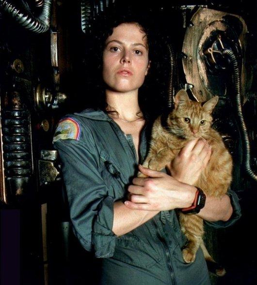 Ellen-Ripley-Alien-Movies-alien-28784748-530-589